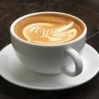 thierry_latte_photocreditjohnsherlock